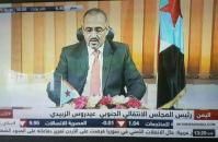 الجالية الجنوبية في مصر تبارك تشكيل المجلس الانتقالي الجنوبي