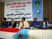 A Panel on the Southern Transitional Council