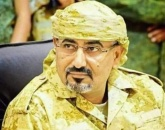 President Al-Zubaidi congratulates the heroes of Giants forces in the West Coast and security belt forces in Morais for their great victories