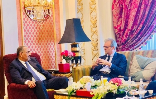 President Al-Zubaidi meets the French Ambassador to Yemen