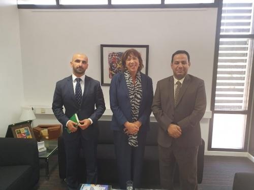 Transitional Council Foreign Affairs Representative meets Ambassador of Netherlands to Yemen