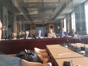 Representative of Transitional Council reviews cases of Al-Qomishi, Habtoor and Al-Faidhi at symposium of Arab Committee for Human Rights in Geneva