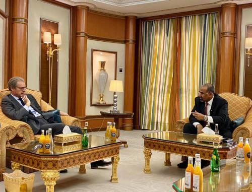 President Aidaroos Al-Zubaidi receives the French Ambassador to Yemen