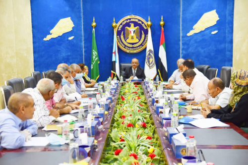 Supreme Economic Committee of Transitional Council approves its organizational regulations