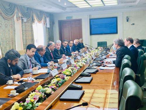 President Al-Zubaidi holds talks with the Russian Federation Council
