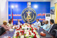 Foreign Relations Committee of National Assembly reviews its work program and latest developments in the South